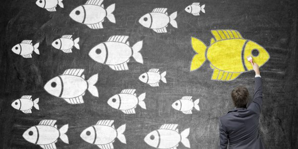 Different direction concept with businessman drawing goldfish sketch on chalkboard